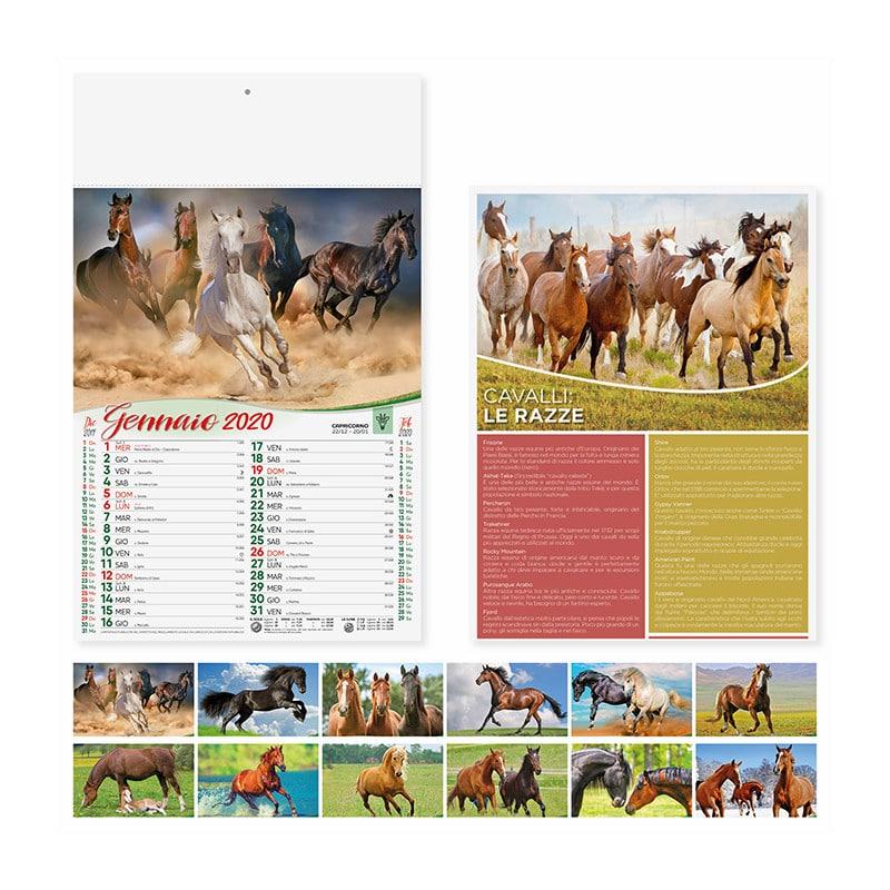 calendario illustrato cavalli pa107