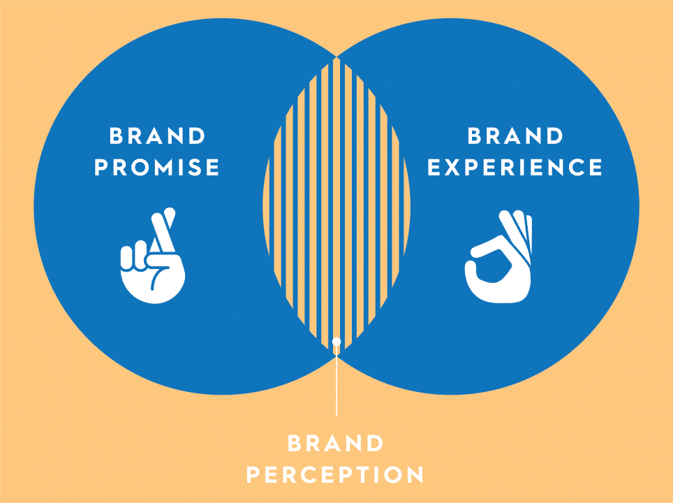 Brand Perception 964x720